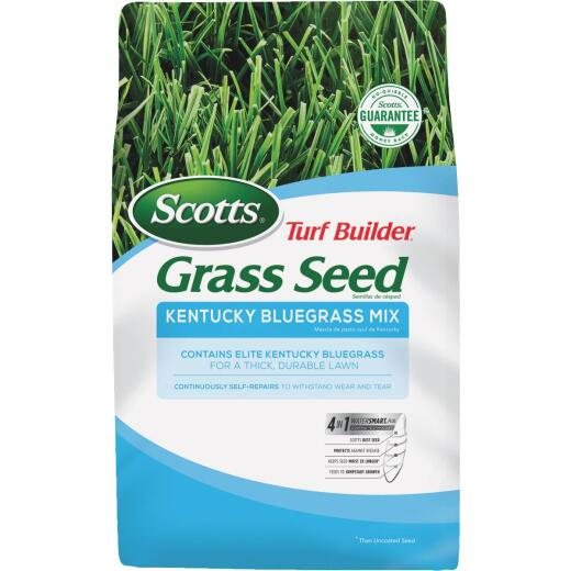 Scotts Turf Builder 7 Lb. Up To 4725 Sq. Ft. Coverage Kentucky Bluegrass Grass Seed