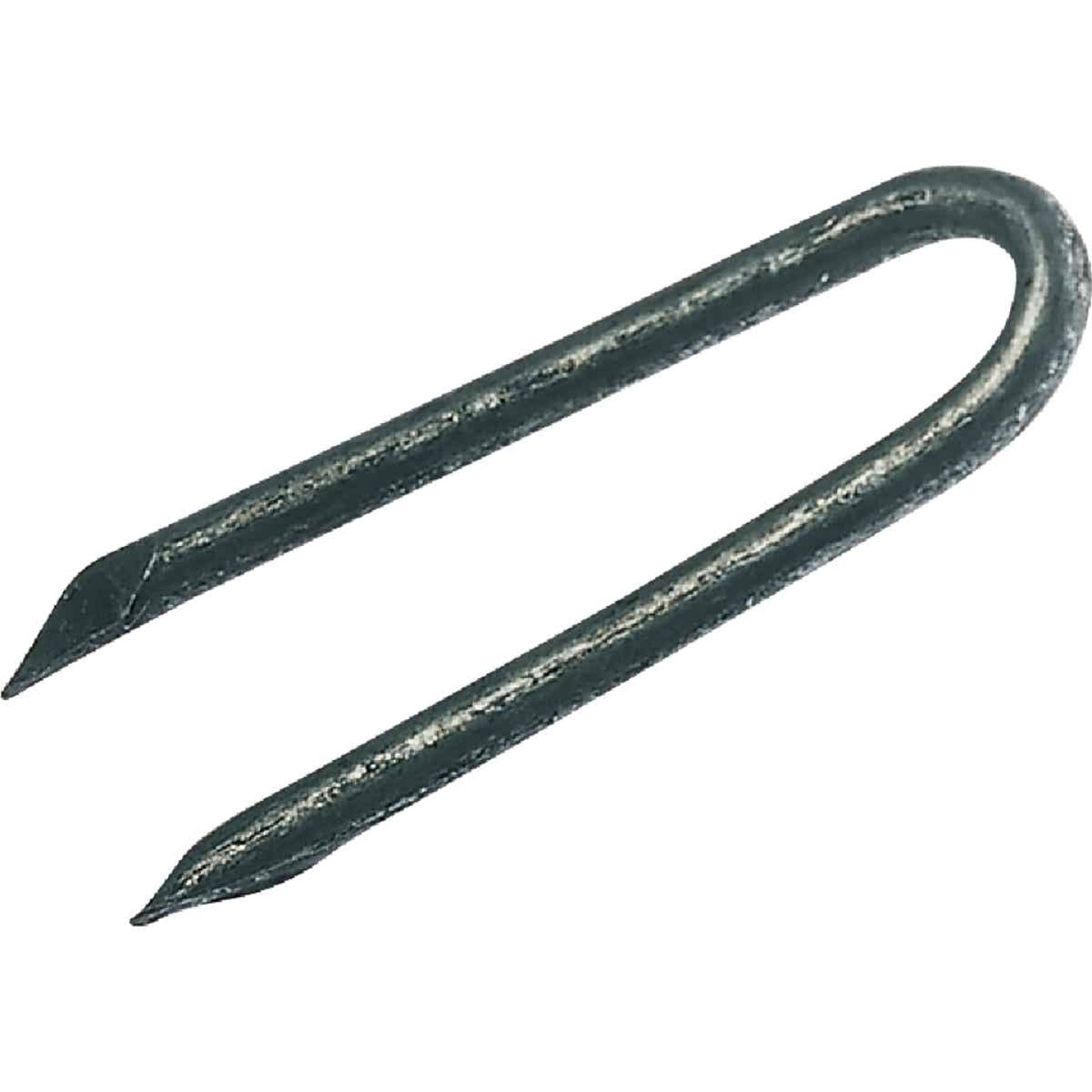 Grip-Rite 1 In. 9 ga Hot Galvanized Fence Staple (5300 Ct., 50 Lb.) Image 1